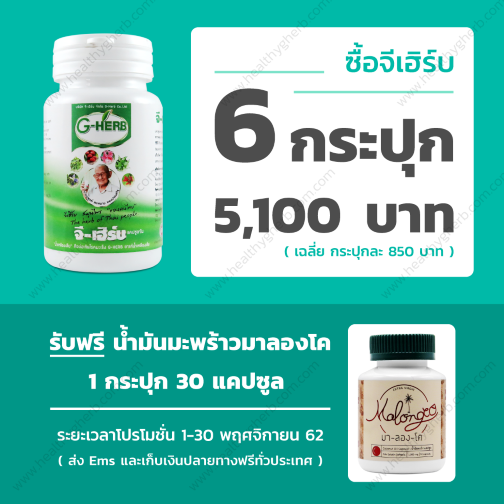 healthygherb_3_1040x1040